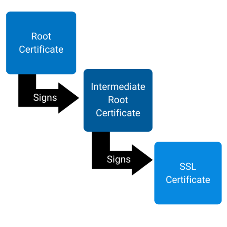 SSL/TLS certificate root chain